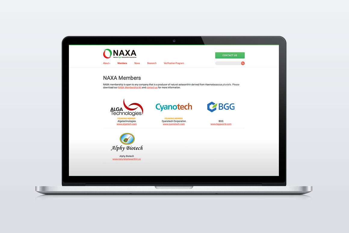 NAXA Website Screen Shot 2