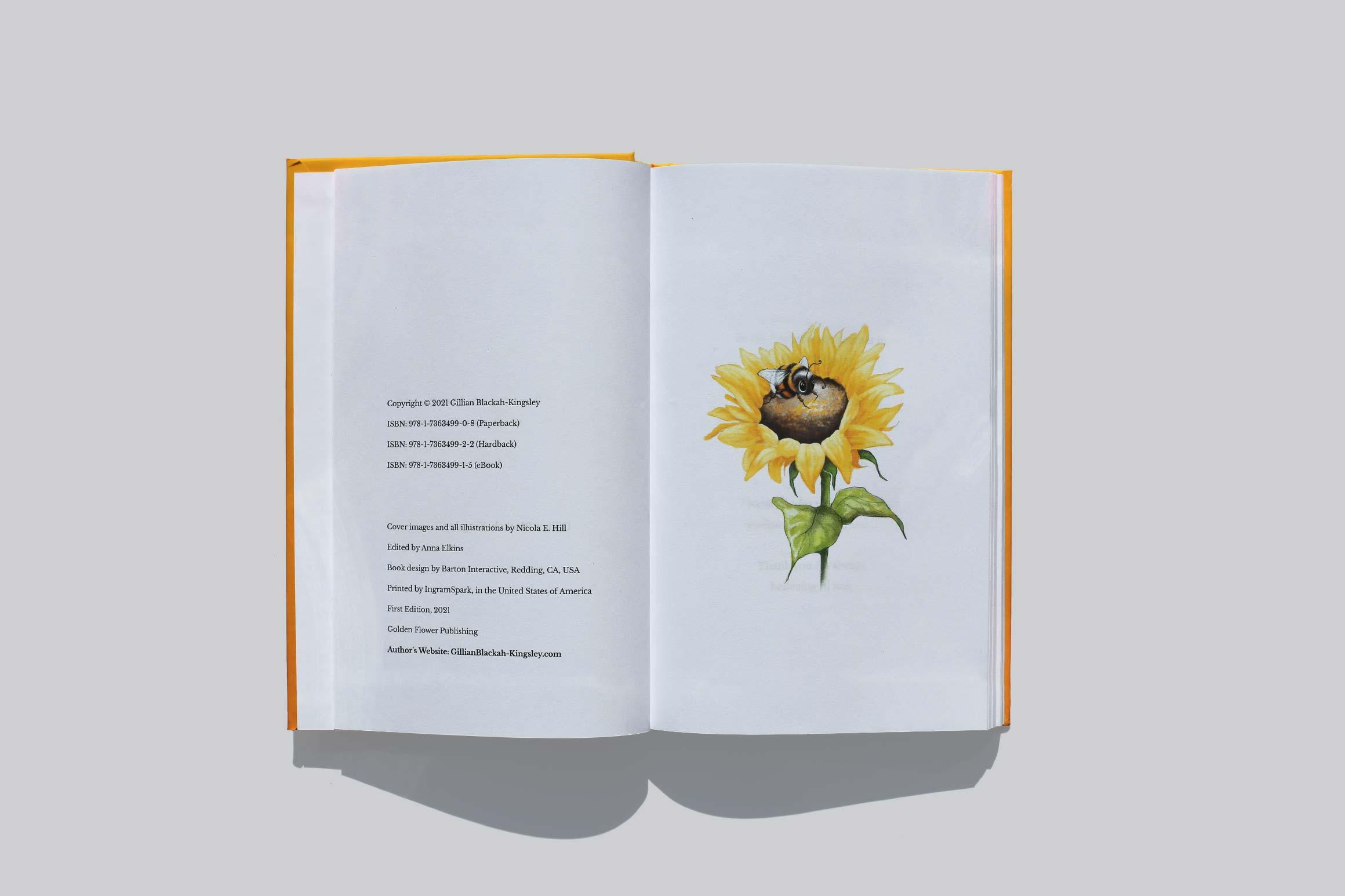 Gillian Kingsley Book Photo